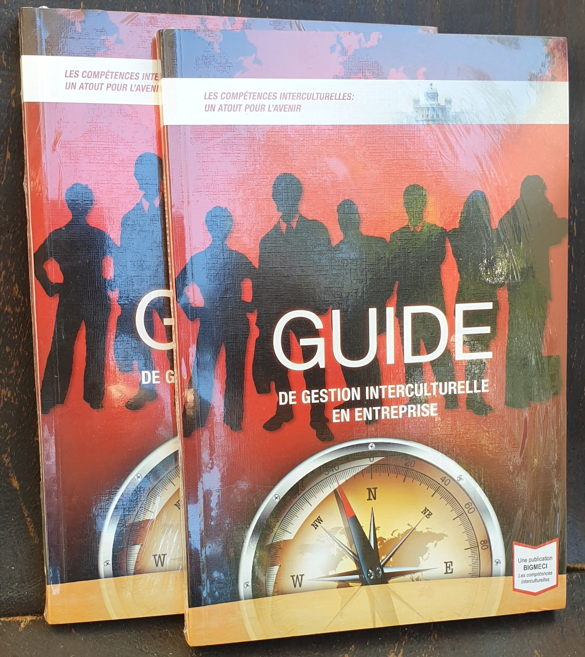 Guide de Gestion Interculturelle
